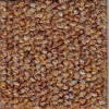 Barley Precision II Carpet Tile