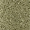 Apple Durham Twist Carpet